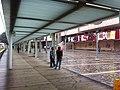HK TST Salisbury Road Garden covered walkway path rain Nov-2012.JPG