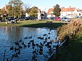 Haddenham duck pond-geograph-3230599-by-Michael-Trolove.jpg