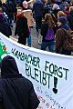 Hambacher Forest at Blockupy Demo, 22.Nov 2014 (15892512571).jpg