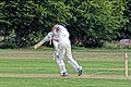 Hatfield Heath CC v. Thorley CC on Hatfield Heath village green, Essex, England 17.jpg