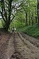 Herepath Bridleway - geograph.org.uk - 1284016.jpg