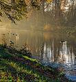 Herfst in Historisch park Heremastate 02.jpg