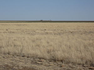 High Plains (United States) - Image: High Plains Cimarron County Oklahoma 17March 2009