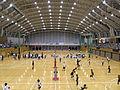 Hiratsuka arena 1-1.JPG