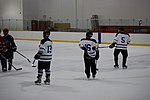 Hockey 20080824 (2) (2794823987).jpg