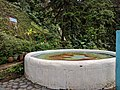 Holy Spirit Fountain.jpg