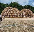 Holzkonstruktion auf dem Bundesgartenschaugelände - panoramio.jpg