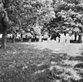 Hoogstraat - Blaloweg, begraafplaats - Zwolle - 20230553 - RCE.jpg
