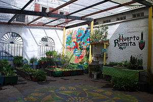 Urban agriculture - Huerto (vegetable garden or orchard) Romita, organization dedicated to urban agriculture located in the La Romita section of Colonia Roma, Mexico City