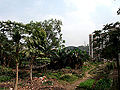 Huizhou University compound.JPG
