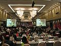 ICAPP Conference on Natural Disasters and Environmental Protection.jpg