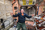 ISS-43 Scott Kelly watches a bunch of fresh carrots.jpg
