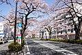 Ibaraki Prefectural Route-293 02.jpg