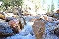 Ice Cold Bath (233043389).jpeg