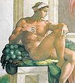 Ignudo (Michelangelo).jpg