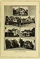 Illustrated bulletin (1917) (14598129437).jpg