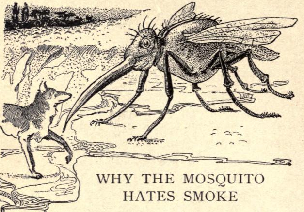 In the reign of coyote (1905) Why the mosquito hates smoke