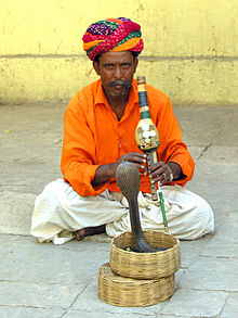India-6784 - No Money - No Picture .... A Real Charmer - Flickr - archer10 (Dennis).jpg