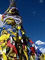 India - Ladakh - Leh - 041 - Prayer flags at old fort (3842500251).jpg