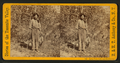 Indian Tom, Guide and mail carrier, by E. & H.T. Anthony (Firm).png