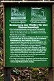Informationstafel Bedeutung des Waldes für den Wasserhaushalt.jpg