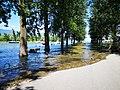 Inondations de juillet 2021 à Yverdon-les-Bains 6.jpg