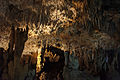 Ishigaki-Cave18s5s4592.jpg