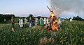 Ivan Kupala Day in Belgorod Oblast 2013 crop.jpg