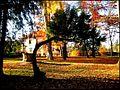 Ivanić Grad - Park Stephen Posezija - panoramio.jpg