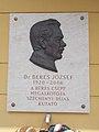 József Béres plaque-relief by Barna Búza, Flórián Square, 2017 Kisvárda.jpg