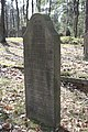 Jüdischer Friedhof Hoyerhagen 20090413 035.JPG