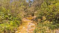 Jaboticatubas - State of Minas Gerais, Brazil - panoramio (100).jpg