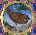 Jacopo filippo argenta e martino da modena, graduale XIII, 1480-1500 ca, 13, 3.jpg