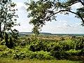 Janowiec - panoramio - Mietek Ł (4).jpg