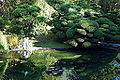 Japanese Tea Garden (San Francisco) - DSC00219.JPG