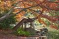 Japanese Traditional Garden, Shinjuku Gyoen(Shinjuku Imperial Garden) - 日本庭園, 新宿御苑 - panoramio.jpg