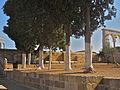 Jerusalem Whitewashed trees on the Temple Mount (6035835915).jpg