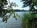 Jezioro Miejskie - panoramio (1).jpg