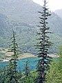 Jiuzhaigou Valley 2002-09-12 11.jpg