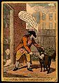 John Glaisyer a Quaker anointing a dog with burning vitriol Wellcome V0011319.jpg