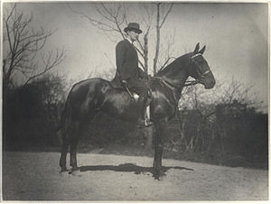 John Quinn (collector) - John Quinn circa 1913