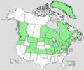 Juncus gerardii range map.png