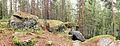 Jyväskylä - rock and forest.jpg