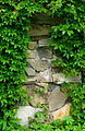 Kamienna Góra, cmentarz żydowski (Aw58)DSCF7746.jpg