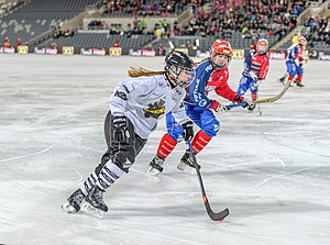 AIK Bandy - In the national final 2015