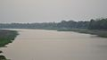 Katiganga Billabong - Murshidabad 2017-03-28 6595.JPG
