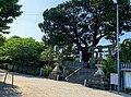 Kawashima Park.jpeg