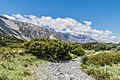 Kea Point Track in Mount Cook National Park 03.jpg