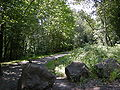 Kent, Washington - Green River Trail entrance from near 94th Pl. S.jpg