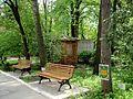 Kharkiv natural sanctuary Institute 4.JPG